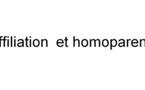 Homoparentalité et affiliation